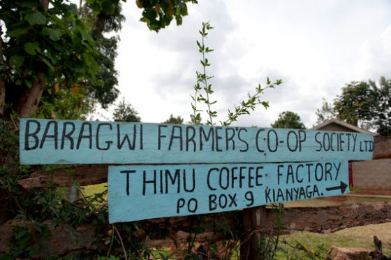 Die Baragwi Farmers Cooperative Society