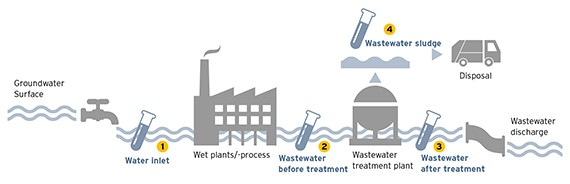 Water cycle of a wet plant, as well as possible measuring points for sewage and sludge tests.